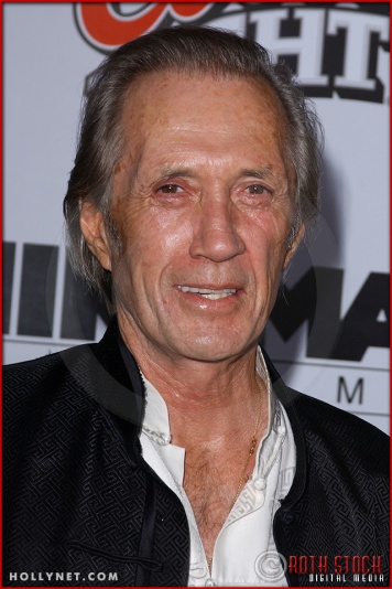 "David Carradine attends the Los Angeles Premiere Screening of ""Kill Bill Vol. 1"""